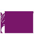 Logo115