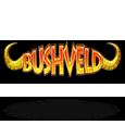 Bashveld