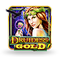 Druides gold