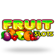 Froot sl logo