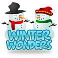 5winter wonders