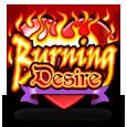 Burning desire logo