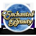 Enchanted beauty