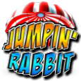 Jumping rabbit