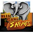 Big time safari