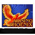 Arising phoenix