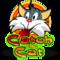 Catch the cat