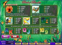 Game Review Birds of Paradise