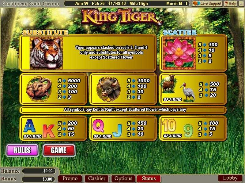 Game Review King Tiger
