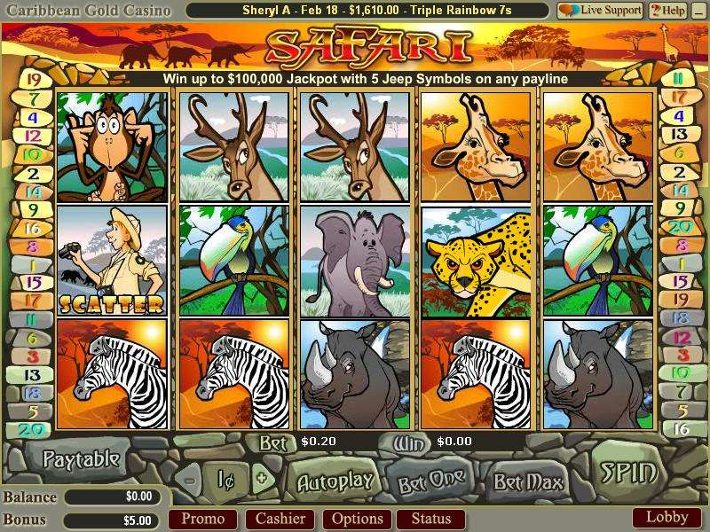 Game Review Safari