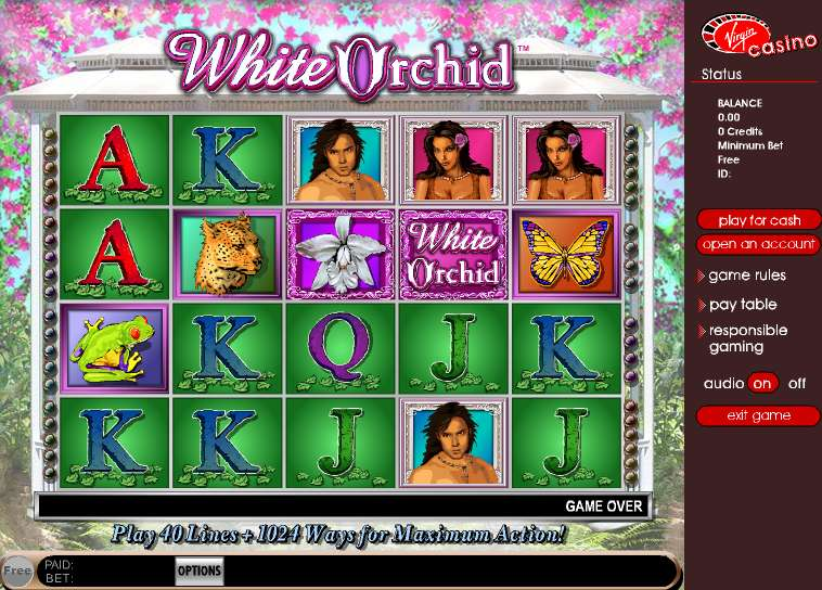 Game Review White Orchid