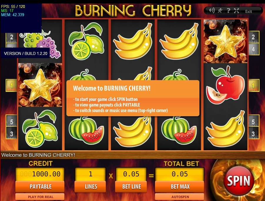 Game Review Burning Cherry