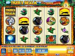 Game Review Tiger's Realm