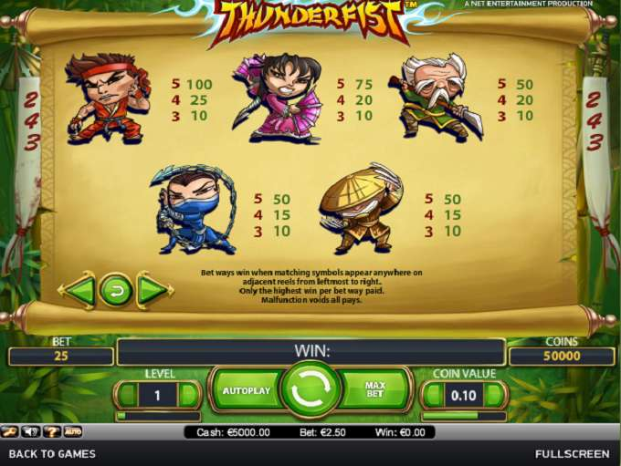 Game Review Thunderfist