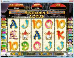 Game Review Golden Lotus