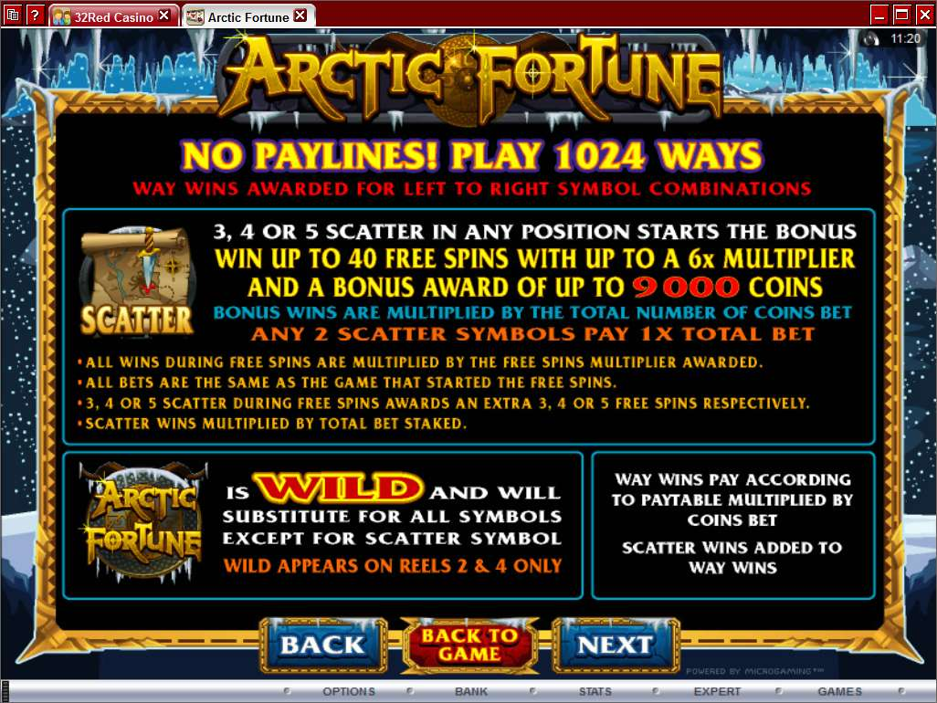 Game Review Arctic Fortune