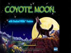 Game Review Coyote Moon