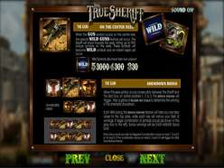 Game Review The True Sheriff
