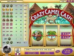 Game Review Crazy Camel Cash