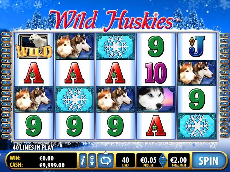 Game Review Wild Huskies