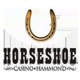 071 hammond horseshoe