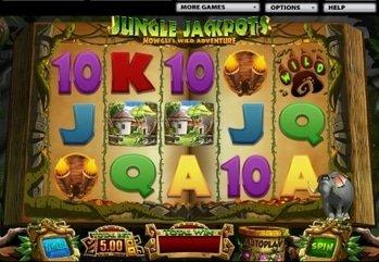 21449 lcb 129k gk lcb 78 jungle jackpots slot