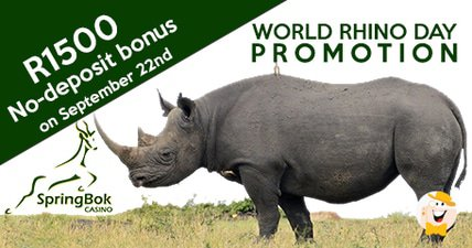 Springbok casino hosts world rhino day no deposit bonus