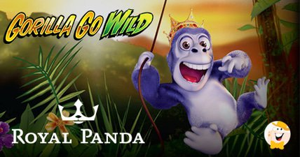 84k gorilla go wild jackpot for royal panda player
