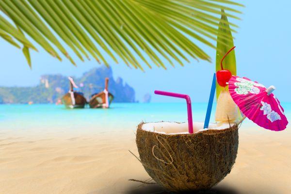 CoconutParadiseIsland