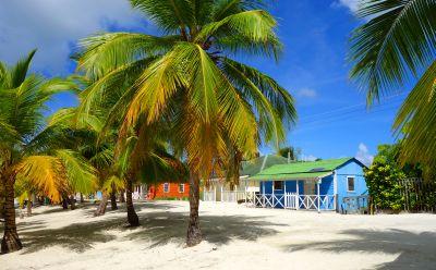 CaribbeanHouseVisit